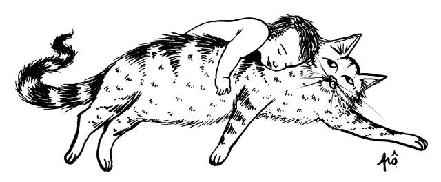 bébé câlin chat signé